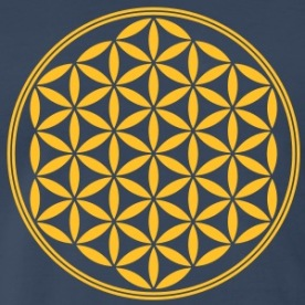 vector-flower-of-life-02-1c-sacred-geometry-energy-symbol-powerful-healing-protection-cl-t-shirts-mens-premium-t-shirt